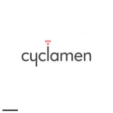 Cyclamen (Цикламен)