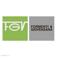 FGV (Италия)